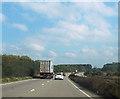 SJ3761 : A483 north near Black wood by John Firth