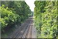 TQ5346 : Redhill to Tonbridge Railway Line by N Chadwick