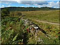 NS3581 : Dry-stone dyke by Lairich Rig