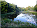S4681 : The Lake, Heywood Gardens by Oliver Dixon