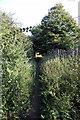 TL1542 : Bridleway to Broom by Philip Jeffrey