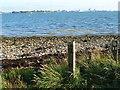 SU6204 : Portsmouth seen across Portsmouth Harbour by Marathon