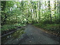 TQ0193 : Shire Lane, Chalfont Common by David Howard