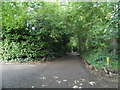 SU9791 : Wiltons Lane, Jordans by David Howard