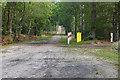 SU8457 : Track through Hawley Common by Alan Hunt