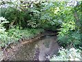 SW7628 : Stream flowing into Porth Navas Creek by David Smith