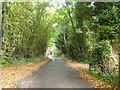 SP9303 : Westdean Lane by Robin Webster