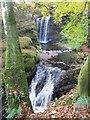 NS4604 : Dalcairney Falls (Dalcairney Linn) : Week 43