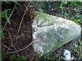 SW6028 : OS rivet - Ashton milestone by Richard Law