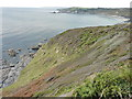 SW5627 : Steep ground west of Hoe Point by Richard Law