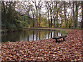 SJ9493 : Peak Forest Canal : Week 45