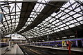 SJ3590 : Lime Street Station, Liverpool : Week 45