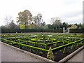 SO9463 : Hanbury Hall Formal Gardens : Week 46