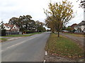 TM2446 : Main Road Martlesham by Adrian Cable
