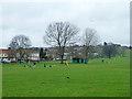 TQ2087 : Silver Jubilee Park by Robin Webster