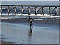 NZ5134 : Sea angler on North Sands : Week 46