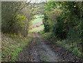 NZ2437 : Track descending towards River Wear : Week 47