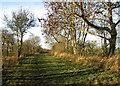 TL3458 : Caldecote to Bourn by John Sutton