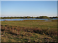 TL3470 : Ferry Mere, Fen Drayton Lakes by Hugh Venables