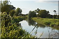 SU5566 : Kennet & Avon Canal by N Chadwick