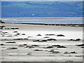 SH5536 : Shifting sands on Black Rock Sands : Week 49