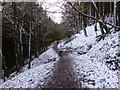 SJ9670 : Path up Nessit Hill by Dave Dunford