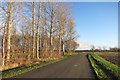 SU4190 : Grove Park Drive by Des Blenkinsopp