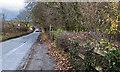 SJ5578 : A footpath off Aston Lane by Ian Greig