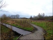 SJ8851 : Paths at Ford Green by Jonathan Hutchins