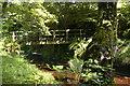 SE6294 : Footbridge over Hodge Beck by Christopher Hilton
