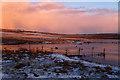 HP5901 : Easter Loch, Uyeasound : Week 3