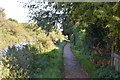 SU4667 : National Cycle Route 4 along the Kennet & Avon Canal by N Chadwick
