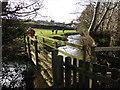 ST0940 : Footbridge on Doniford Stream : Week 4