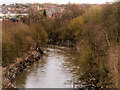 SD7806 : River Irwell, Radcliffe by David Dixon