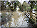 SP2755 : Flooded footpath by David P Howard