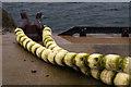 HP5900 : Floats tied around a bollard on Uyeasound pier : Week 6