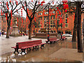 SJ8398 : Red Lanterns in Albert Square by David Dixon