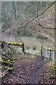 ST7561 : Path, Horsecombe Vale by Derek Harper