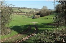 ST7258 : Track near White Ox Mead Farm by Derek Harper