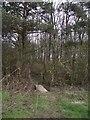 SP8028 : Footpath from Dodley Hill Farm to Church Hill Farm by Tim Glover
