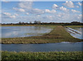 TL4482 : Shallow flooding on the Ouse Washes by Hugh Venables