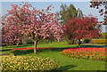 ST5971 : Windmill Hill Park by Wayland Smith