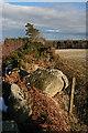 NJ6513 : Boulders in a Dyke by Anne Burgess