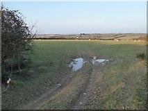 SW9071 : Farmland near Treleigh Farm by Philip Halling