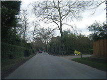 SU9984 : Fulmer Common Road heads west by Colin Pyle