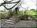 SJ7683 : Footbridge over Birkin Brook by Anthony O'Neil