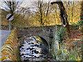 SD6811 : Barrow Bridge, Dean Brook by David Dixon