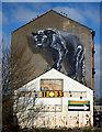 NS5669 : Maryhill Road Panther graffiti style mural : Week 12
