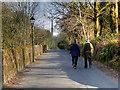 SD6811 : Barrow Bridge Road by David Dixon