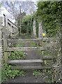 ST7069 : By Manor House Farm by Neil Owen